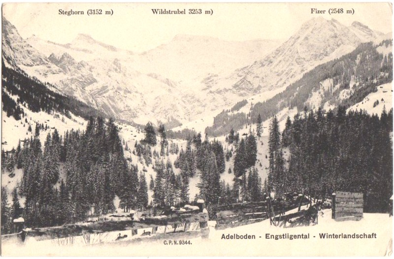 1906 Panoramic postcard from Adelboden